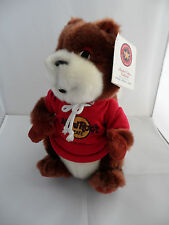 Hard Rock Cafe Oasis TBC Red Squirrel HRC Toy ( Herrington Teddy Bear Company )
