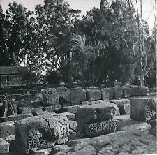 ISRAËL c. 1960 - Synagogue Époque Romaine Capharnaüm  - Div 10491