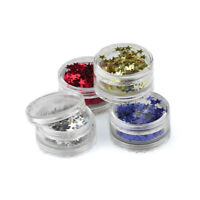 Stargazer Face and Body Glitter Stars Various Colors Festival Rave Party 2g