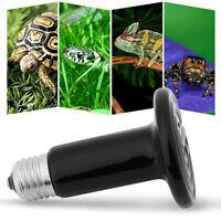 Infrarouge lampe Émetteur en céramique de chaleur ampoule halogène pour reptile