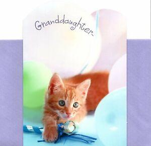 Happy Birthday Granddaughter Blue Eye Eyes Kitten Cat & Balloons Hallmark Card