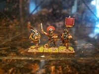 Warlord Games Hail Caesar Early Imperial Romans Legionary Command Painted