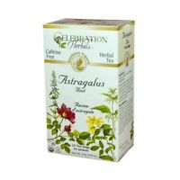 Organic Astragalus Root Tea 24 Bags