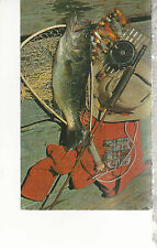 Fish,  Fly Rod & Reel, Net, Flys, Shirt, Hat on Dock  Mailed 1956 Postcard 1317