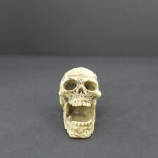 "Mini Skull Head Figurine Celtic Knot 1.5"" Halloween Decoration Statue New 1"