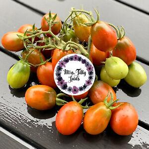 Tomate BLACK DRAGON Tomatensamen 10 Samen russische Pflaumentomate samenfest