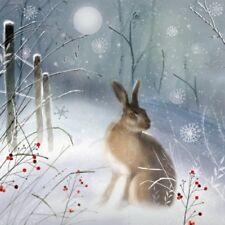 Confezione di 8 Hare MAGICO sclerosi multipla fairdeal biglietti natalizi di beneficenza