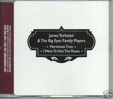 (465T) James Yorkston & The Big Eyes Family Play- DJ CD