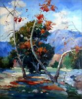 Quality Hand Painted Oil Painting Impression Foothill 20x24in