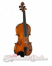 Barcus Berry Violin Acoustic Electric BB100-EL w/ Bow & Case Natural Legendary