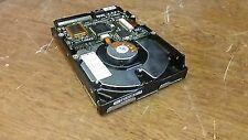 Fast-Wide SCSI
