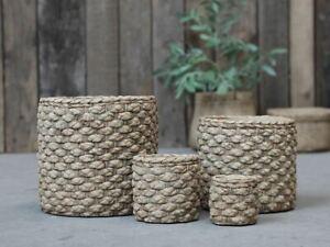 Braided/woven pattern ceramic plant pot