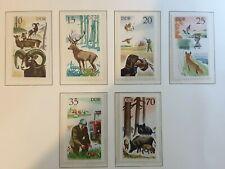 East Germany DDR 1977 Hunting. 6 stamp  set MNH
