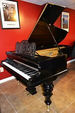 Bargain  price !!!  Art case Bluthner 6'8 grand  piano