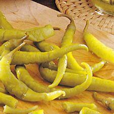 PIMIENTO GUINDILLA BLANCA para vinagre pepper  100 Semillas/ seeds