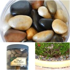 5 lbs. Polished Mixed River Rocks Decorative Stones Garden Fountain Vase Display