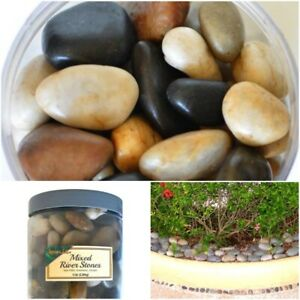 5 lbs. Polished Mixed River Rocks Decorative Stones Garden Fountain Vase Display