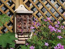 Insect Hotel | Ladybird Lacewing Natural Timber Log Habitat