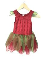 Gymboree Girls Size M 7-8 Strawberry Bodysuit Tutu Dress Costume Ballet Red