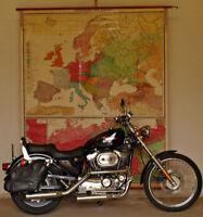 Schulwandkarte Sprachen Völkerkarte Europas~1920 187x223 vintage people wall map