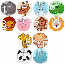 Month to Month Baby Stickers - 1 to 12 Monthly Baby Stickers - Animals Faces2