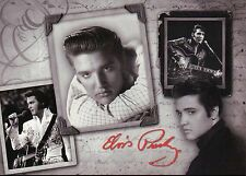Elvis Presley, The King, Different Pictures, Singing, With Guitar etc - Postcard