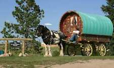 Gypsy Bow Top Caravan  Wagon Plans *BUY 2 GET 1 FREE!!*