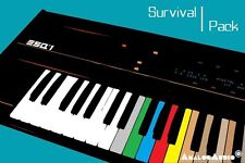 *** ENSONIQ ESQ-1 Survival Pack - NEW STUDIO PATCHES + FACTORY SOUNDS