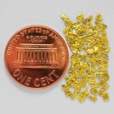 1.0411 Gram Alaska Natural Gold Nuggets --- (#64655-14) - Alaskan Gold Nuggets