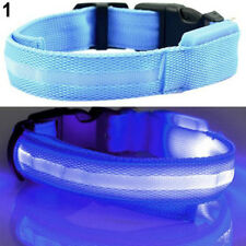 Cool Trendy LED Flashing Collar for Pets Dog Cat Night Safety  Light Luminous