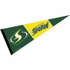 Seattle Storm Pennant Banner