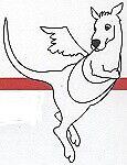 the_flying_kangoo