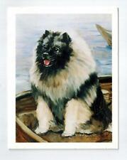 New Keeshond In Boat Notecard Set 6 Note Cards & 6 Envelopes Ruth Maystead