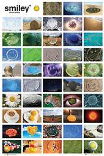 Smiley Foto Galería Póster Maxi Fotografía Bonito Decoración 61cmx91.5cm(380)