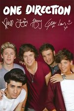 ONE DIRECTION POSTER Amazing Group Shot - Burgundy BGD RARE HOT NEW 24x36