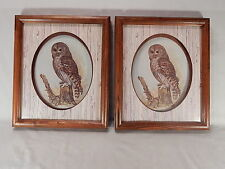 "TWO MATCHING  E. Rambow  OWL PRINTS  Shadowbox Framed 11.5"" x 13.5"" Beautiful"