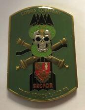 Task Force 1-119 FA Cobra Company Operation New Dawn Camp Virginia Kuwait