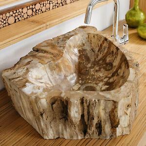 Waschbecken Fossile-2 Fossil versteinertes Holz Handwaschbecken Naturstein Fluss