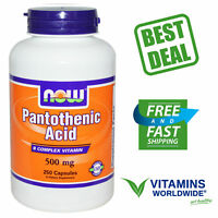 Pantothenic Acid 500 mg Vitamin B5 Now Foods Coenzyme A Non-GMO 250 Capsules