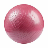 55cm Pink Red Gym Medicine Ball Health Rehab Exercise Physiotherapy Balance Yoga