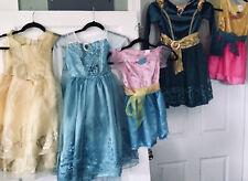Dress Up Lot 5 Gown Lot Size 4-6 Elsa, Belle, Meridian, Fancy Nancy