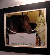 American Pharoah Happy Horse Belmont Stall Triple Crown 11x14 dmat 8x10 photo