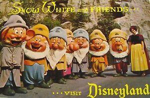 Snow White and Friends Postcard Disney Productions Disneyland Dwarfs Fantasyland