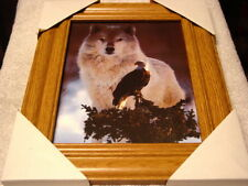 Wolf And Eagle 11X13 Mdf Framed Picture Poster ( Wood Look Frame )