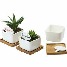 3 Pack 3.4 Inch White Ceramic Small Square Succulent Cactus Flower Plant Pot