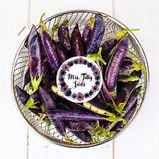 Schalerbsen Für Ca 4 lfm Samen Saatgut Seeds