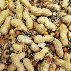 Johnston & Jeff Chipmunk and Squirrel Nut Seed Mix Wild Animal Food