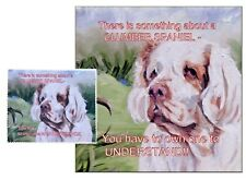 CLUMBER SPANIEL DOG HARDBOARD PLAQUE and LENS CLEANING CLOTH SANDRA COEN ARTIST
