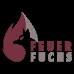 Kaminöfen Feuer Fuchs Aachen