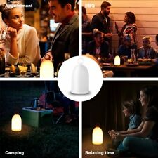 LED Flame Night Light, Fire Flicker Table Lamp 2 Mode Mood Baby Nursery Bedroom